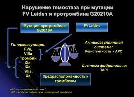 Рисунок 1: Нарушение баланса в системе гемостаза при наличии одновременно мутации FV Leiden и протробина G20210A.