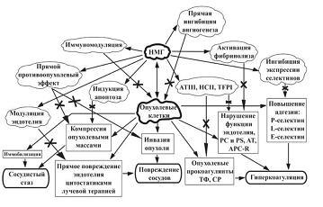 Рисунок 1: Патогенетическое обоснование применения НМГ у онкологических больных в модификации триады Вирхова.