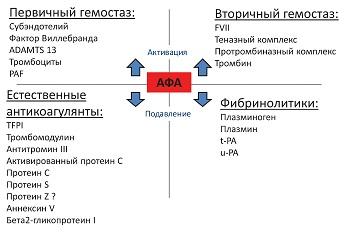 Рисунок 9: Способность АФА полностью разрушать механизмы регуляции жидкого состояния крови.