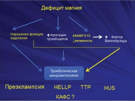 акушеров-гинекологов на