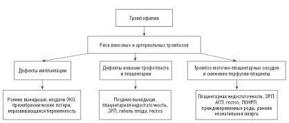 Рисунок 1: Эффекты тромбофилии на разных сроках беременности.