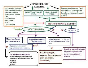 Рисунок 1: Взаимосвязь между метаболическим синдромом, тромбофилией и акушерской патологией.